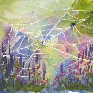 Watercolour painting. RWB0148 Gossamer Web. Artist: Vandy Massey