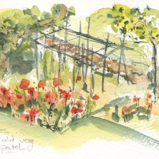 Watercolour painting. RWB0203 Poppies in the veg garden. Artist: Vandy Massey