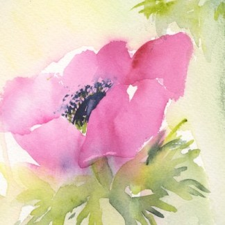 Watercolour painting. SPA014 Pink Delight. Artist: Seonaid Parnell