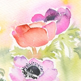 Watercolour painting. SPA021 Three Anenomes. Artist: Seonaid Parnell