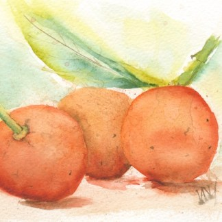 Watercolour painting. RWB0201 - Three Oranges.