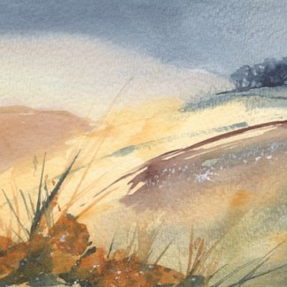 Watercolour painting. RWB0218 - Golden Morning. Artist: Vandy Massey