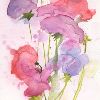 Watercolour painting. RWB0234 Purples and Pinks. Artist: Vandy Massey