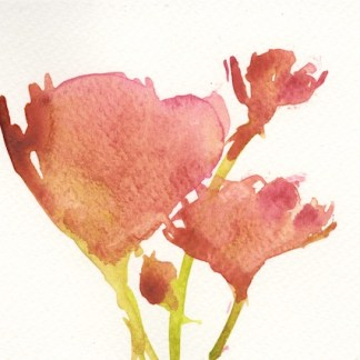 Watercolour painting. IFA002 Red Artist: Isabel Frias de la Uz