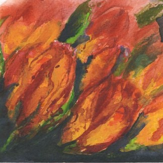 Watercolour painting. RWB0252 Flame Tulips.