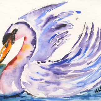 Watercolour painting. MCA005 Elegant Swan. Artist: Margot Cornish