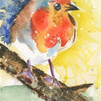 Watercolour painting. MCA022 Robin 1. Artist: Margot Cornish