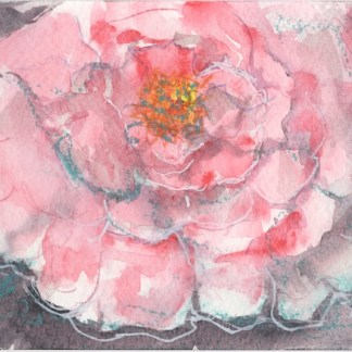 Watercolour painting. RWB0317 Peony Party. Artist: Vandy Massey