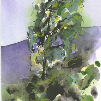 Watercolour painting. CLA005 Tuscan Vista. Artist: Chris Lockood