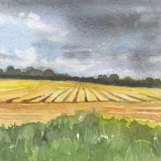 Watercolour painting. HO004 Strumpshaw View. Artist: Helen Otter