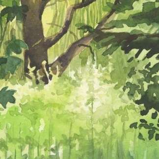 Watercolour painting. HO009 Green Vegetation. Artist: Helen Otter