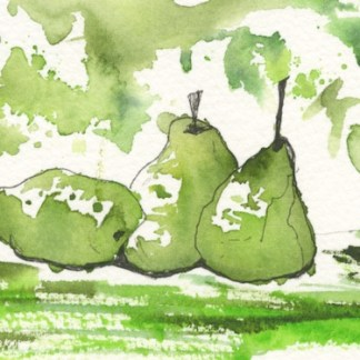 Watercolour painting. MBA001 Green Pears. Artist: Melanie Bettridge