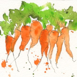 Watercolour painting. MBA003 Root Vegetables. Artist: Melanie Bettridge