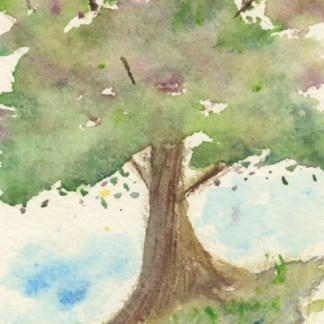Watercolour painting. MBA014 Old Tree. Artist: Melanie Bettridge