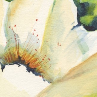 Watercolour painting. RWB0346 Pollen Feast. Artist: Vandy Massey
