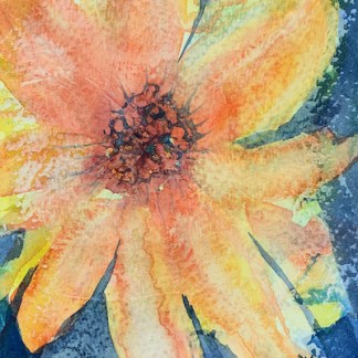 Watercolour painting. RWB0353 Duke's Dahlia. Artist: Vandy Massey