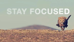 Get Focused ;)