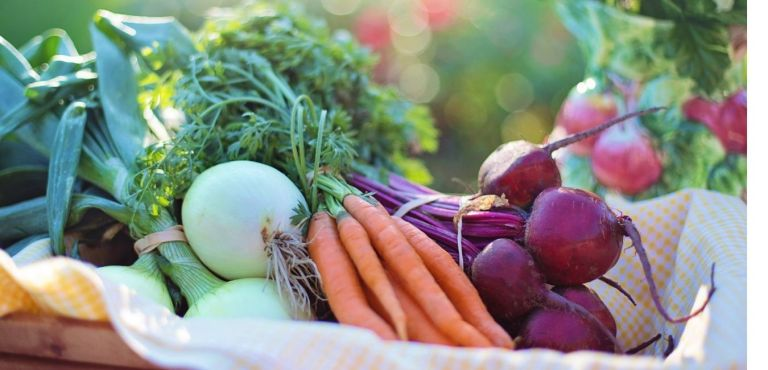 Fruits and vegetables for the immune system.