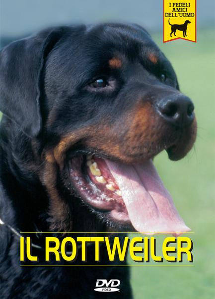 ROTTWEILER documentario video dvd passione animali caratteretraining