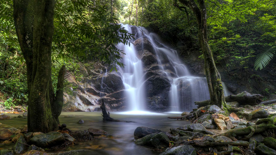 Running Wild at 10 National Parks in Malaysia
