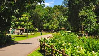 Exploring 6 Interesting Parks in Singapore that are Off the Beaten Track!