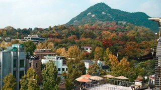 10 Reasons to go Sightseeing in Korea After Running an Autumn Marathon