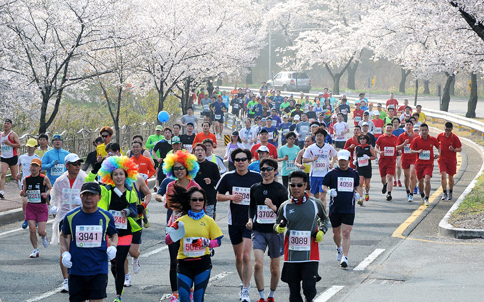 5 Astounding Korea Races You Must Absolutely Know