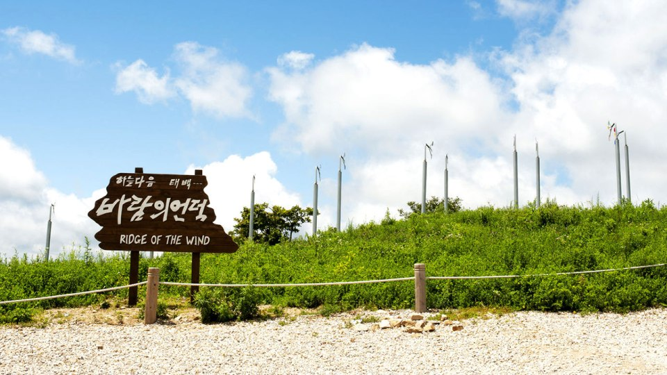 Run Like Crazy at These Awesome Running Trails in South Korea