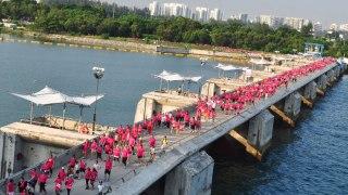 Pink Ribbon Walk 2016