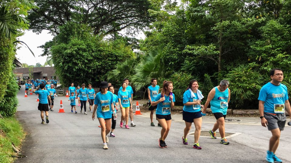 Safari Zoo Run 2017 Race Review: Support Wildlife Conservation by Running