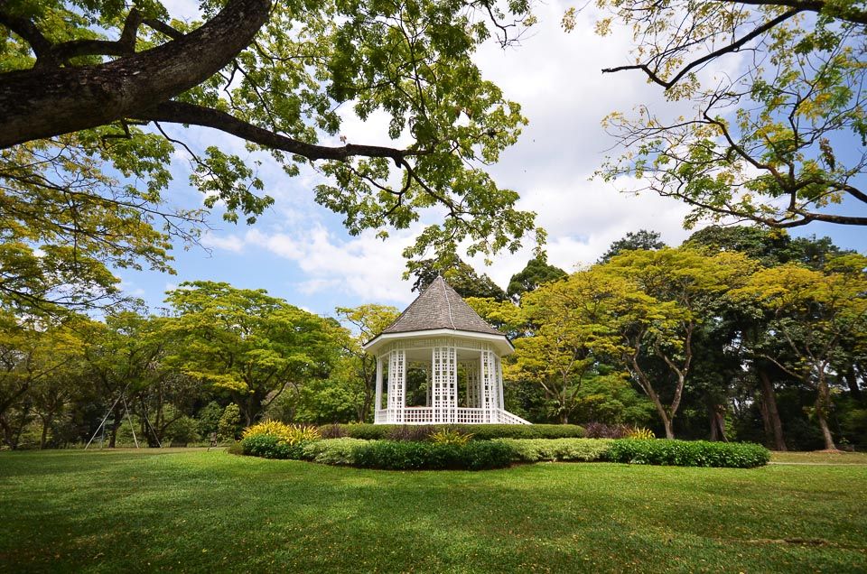 5 Best Singapore's Running Routes in the Central - Botanic Gardens