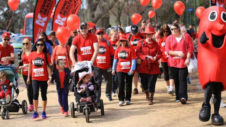 Big Red Kidney Walk: Illawarra