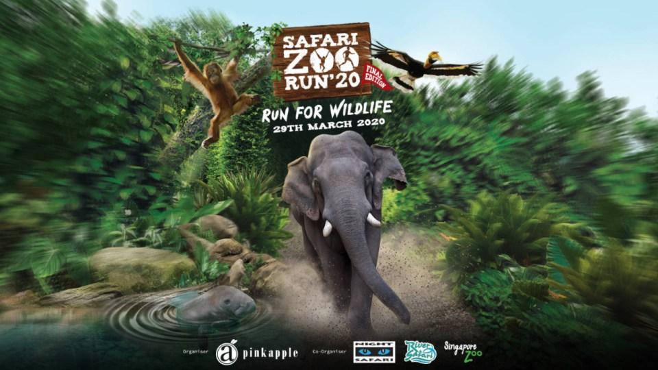 Safari Zoo Run 2020