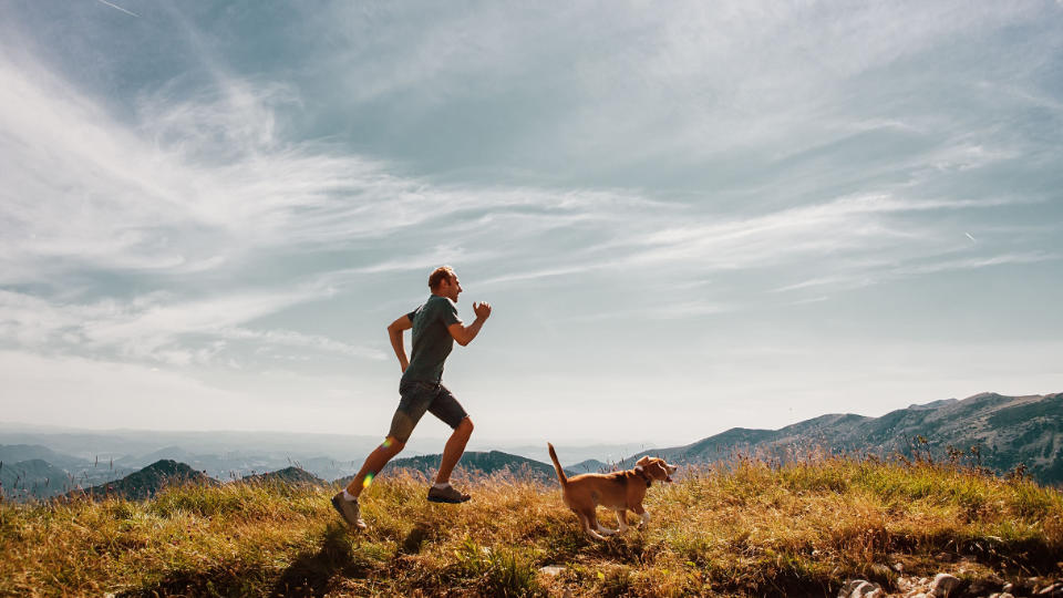 Owning a Dog Can Help You To Live Longer and Run Better
