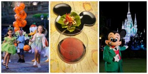 Walt Disney World FREE Dining and Room Only Discount Offers for Fall 2014