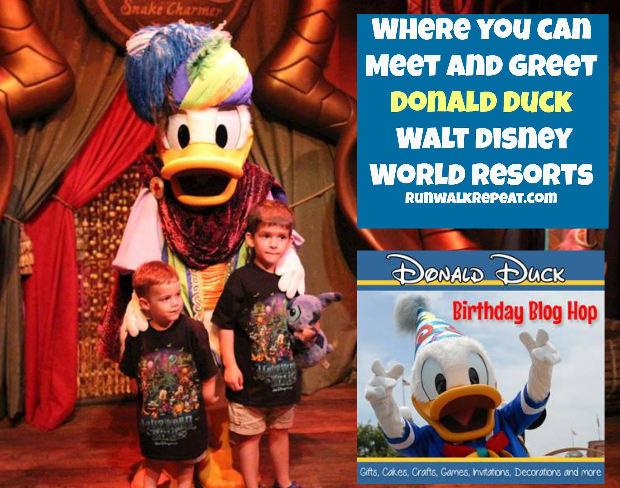 Where To Meet Donald Duck At Walt Disney World Run Walk Repeat