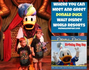 Where to Meet Donald Duck at Walt Disney World
