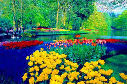 حديقة كيوكنهوف أجمل حديقة في العالم 1