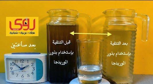 7 خطوات لتنقية و تعقيم الماء في المنزل طبيعياً و بدون فلاتر