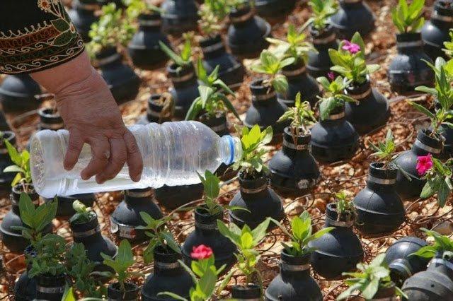 حديقة قنابل الغاز في قرية بلين بالضفة الغربية