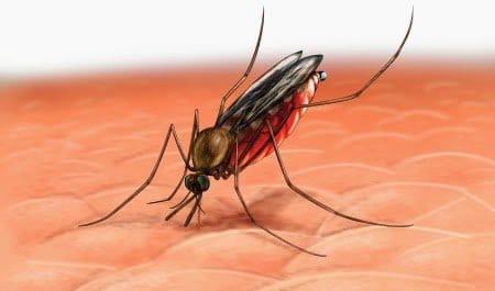 مناعة الأطفال تساعد في اكتشاف لقاح جديد للملاريا 9