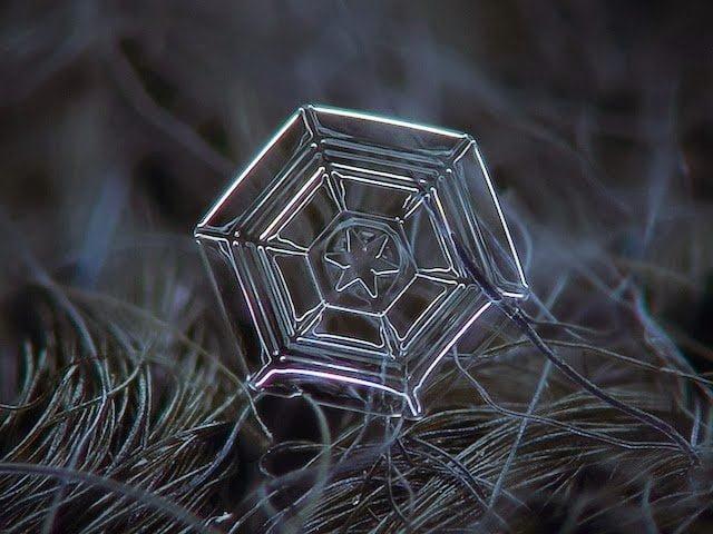 شاهد روعة بلورات الجليد تحت المجهر 10