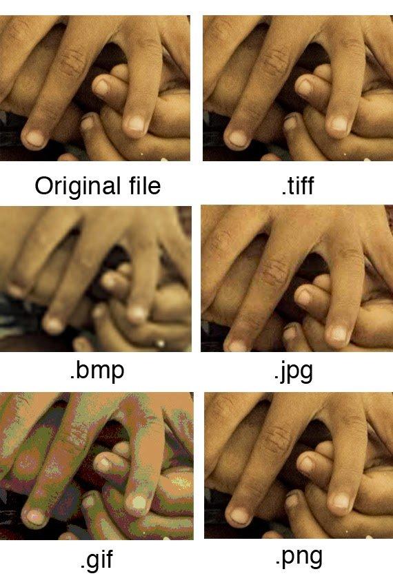 مقارنة بين أهم صيغ و إمتدادات الصور ( TIFF ,JPG, GIF, PNG ) و الفرق بينها 6