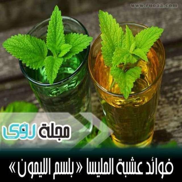 استخدامات و فوائد عشبة المليسا ( بلسم الليمون ) 1