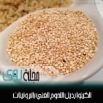 بذور الشيا ( التشيا ) ثورة عالم الأغذية الصحية - Chia seeds 6