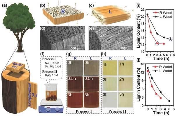 اصنع بنفسك : حول الخشب العادي إلى خشب شفاف ؟! 2