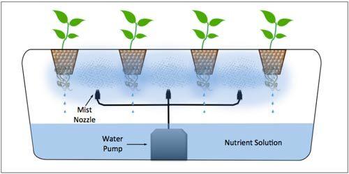 تقنيات الزراعة بدون تربة : الهيدروبونيك - الأيروبونيك - الأكوابونيك 4