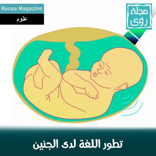 تطور اللغة يبدأ في مرحلة الجنين قبل الولادة - مترجم 1