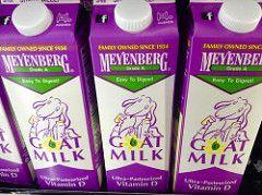 لماذا تفوق فوائد حليب الماعز فوائد حليب الأبقار ؟ 3