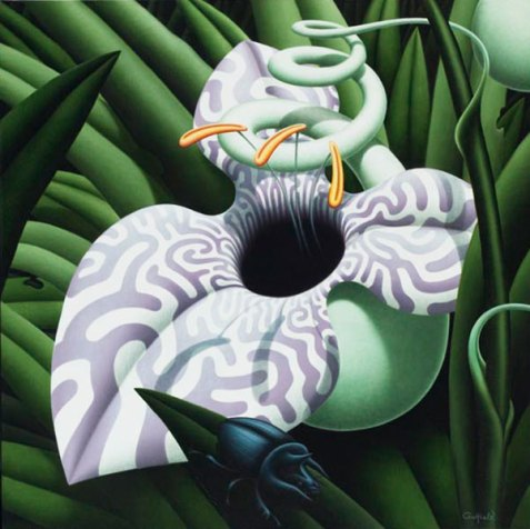 Labyrinth Orchid 24 x 24 ins Oil on Linen SOLD